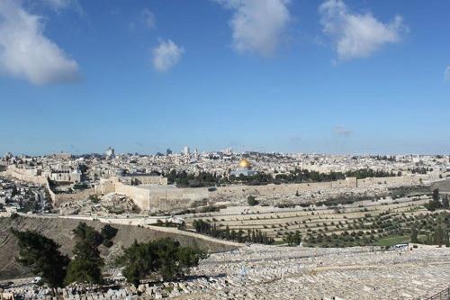 Lisa från Palestina bild